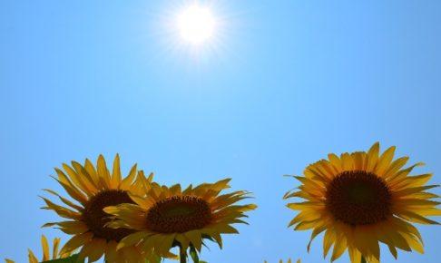 男でも日焼け止めを使うべき!おすすめの日焼け止めと正しい使い方をご紹介します!