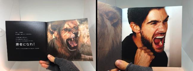 アクアモイスパンフレットライオンと男性