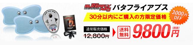 バタフライアブス公式サイト価格