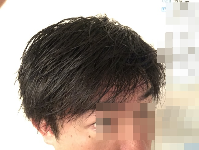 LIPPSヘアオイルを使用する前