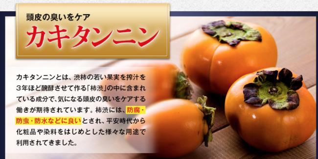 m3040シャンプーの柿タンニン画像