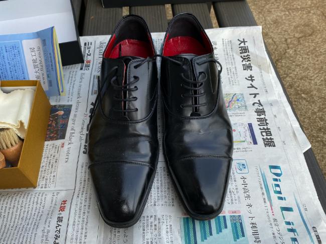 手入れをさぼっていた革靴の全体